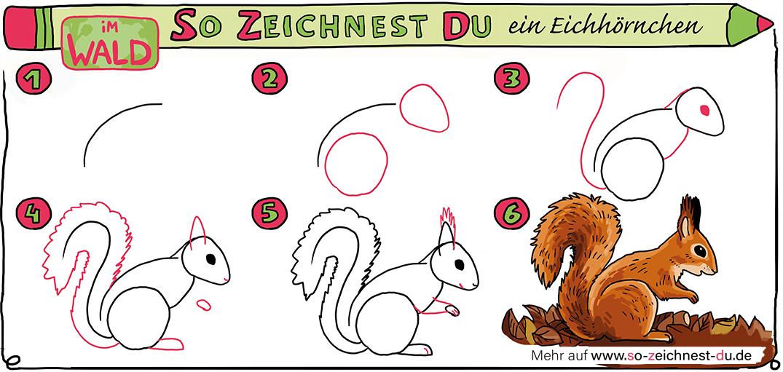 So-zeichnest-du-ein-Eichhörnchen