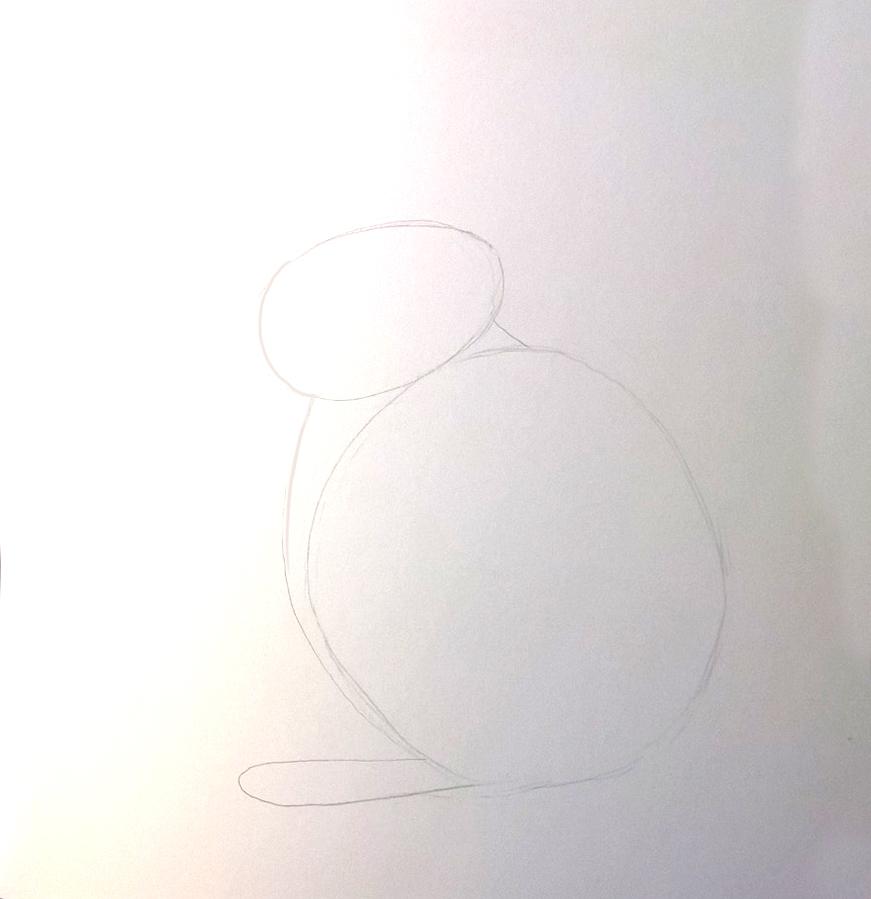 So zeichnest du ein Kaninchen, Zeichnung Schritt 3