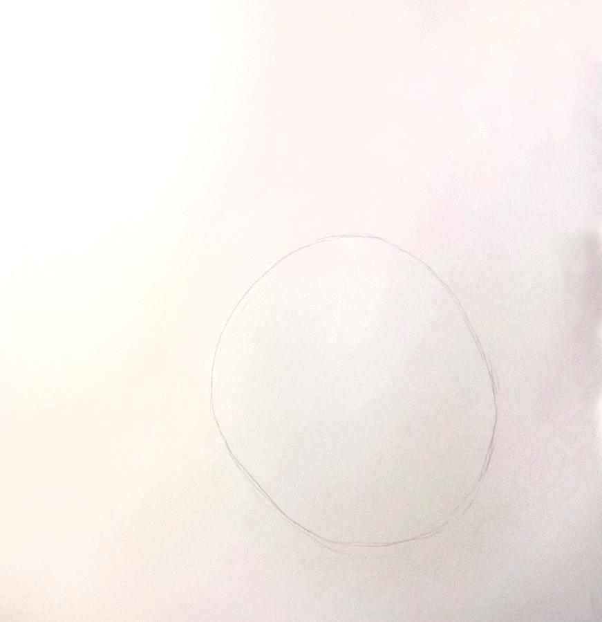 So zeichnest du ein Kaninchen, Zeichnung Schritt 1