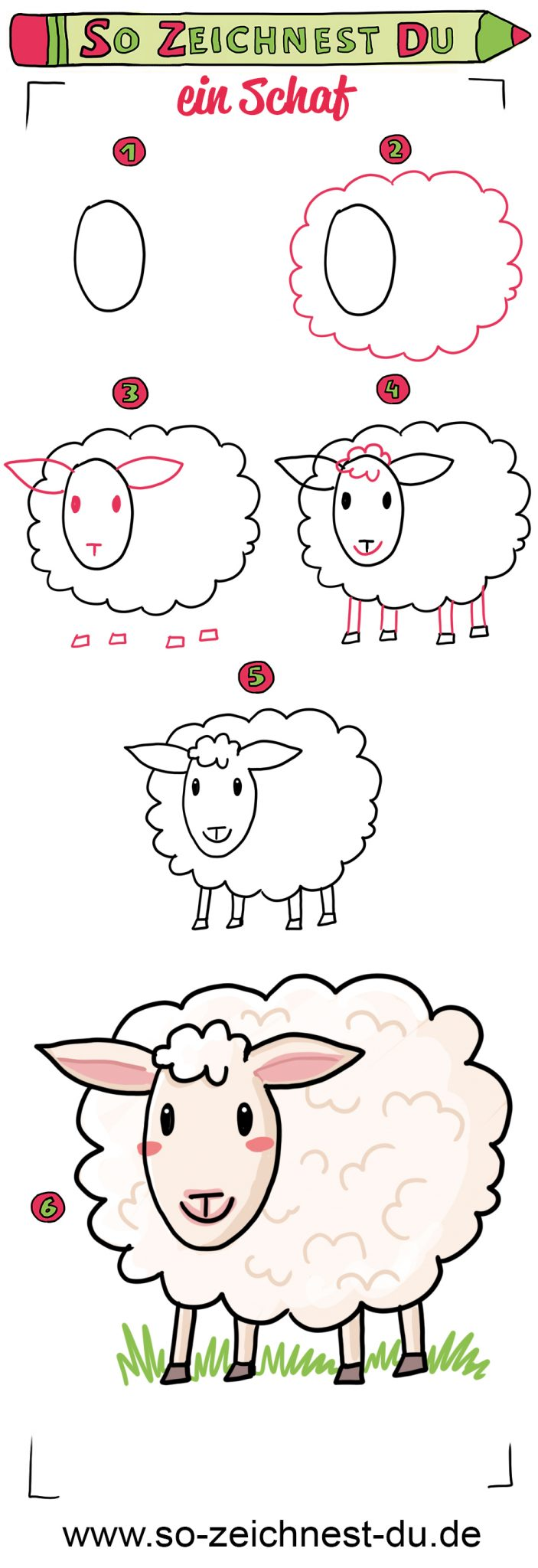 So zeichnest du ein süßes Schaf Bauernhof