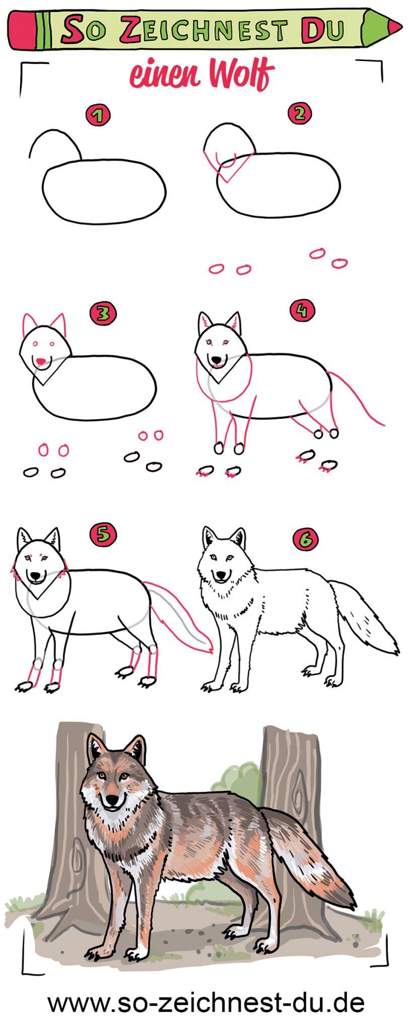 So zeichnest du einen Wolf Wald Märchen Zeichenschule