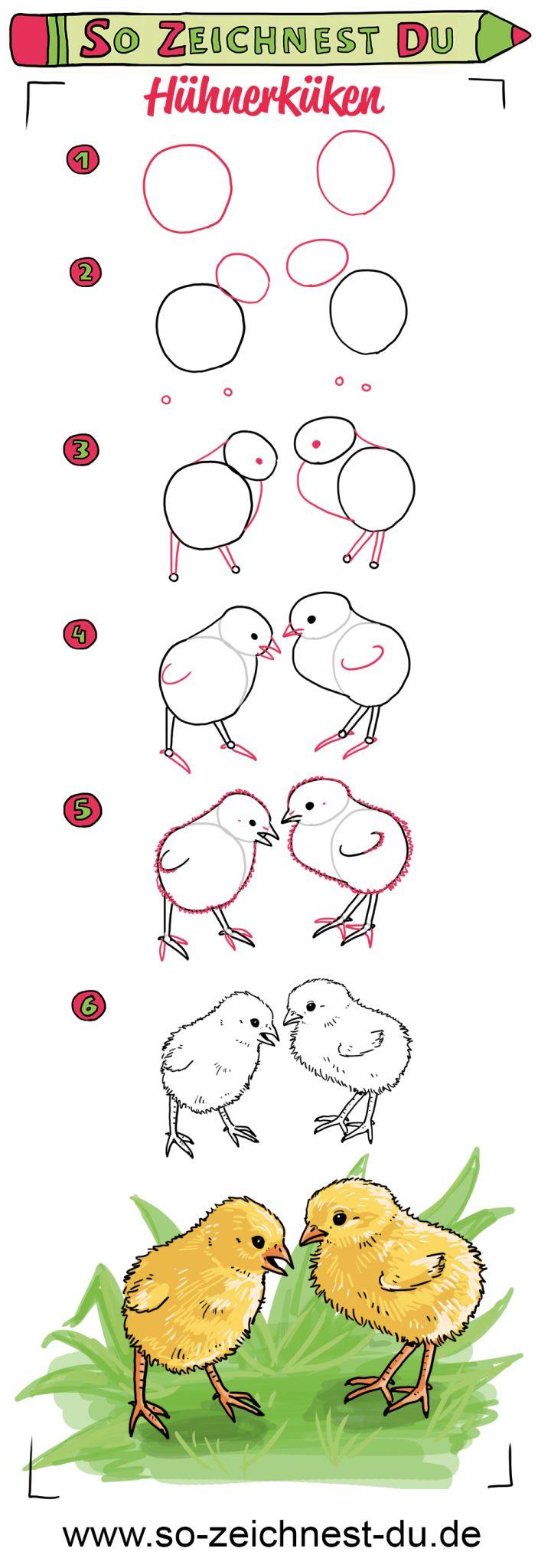 So zeichnest du Küken Zeichenschule Ostern Huhn