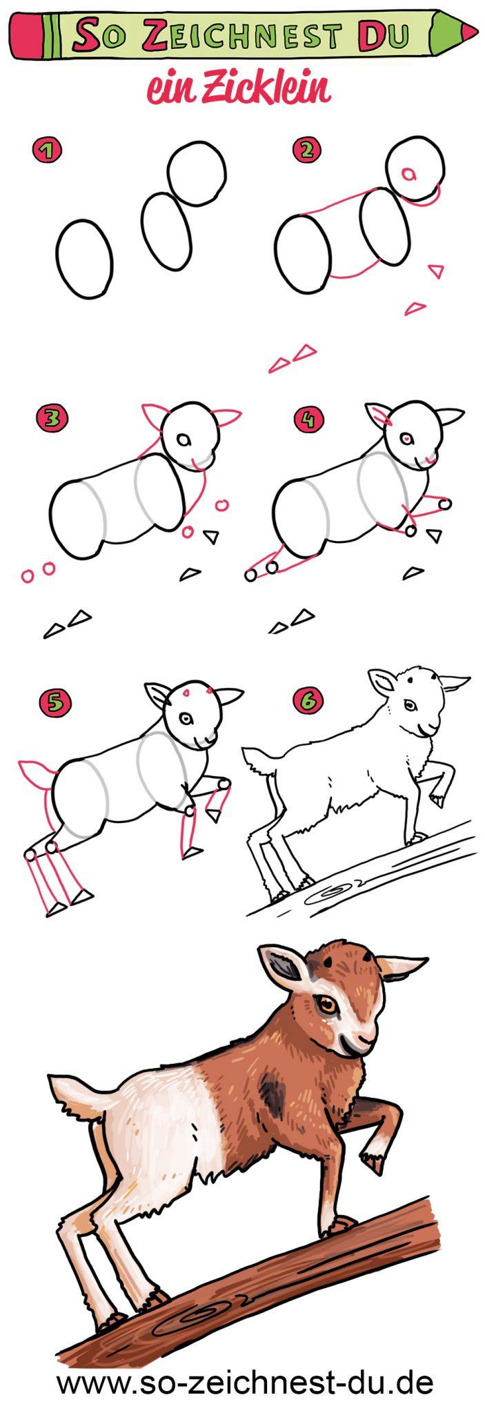 So zeichnest du ein Zicklein Baby Ziege Bauernhof Zeichenschule