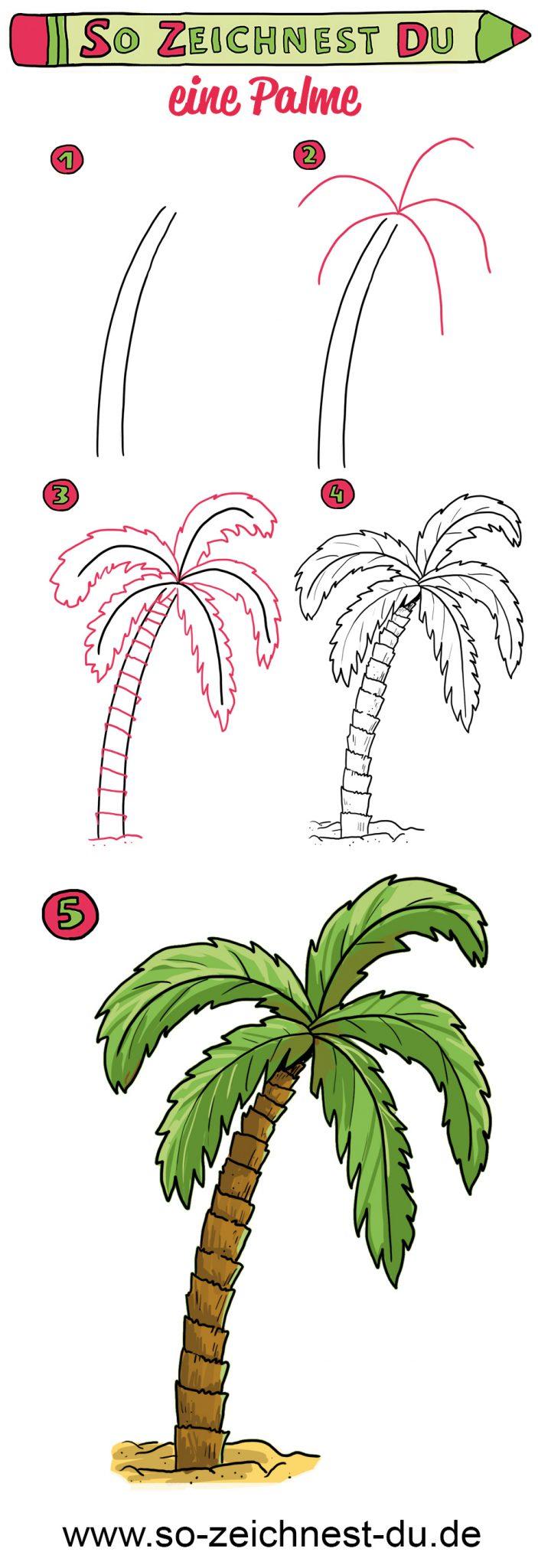 So zeichnest du eine Palme Zeichenschule
