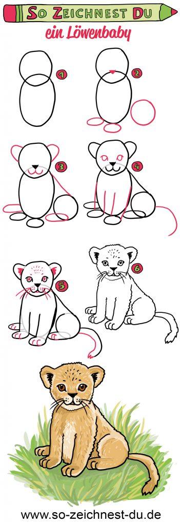 So zeichnest du ein Löwenbaby Baby Löwe Simba Zeichenschule Savanne Afrika Tierkind