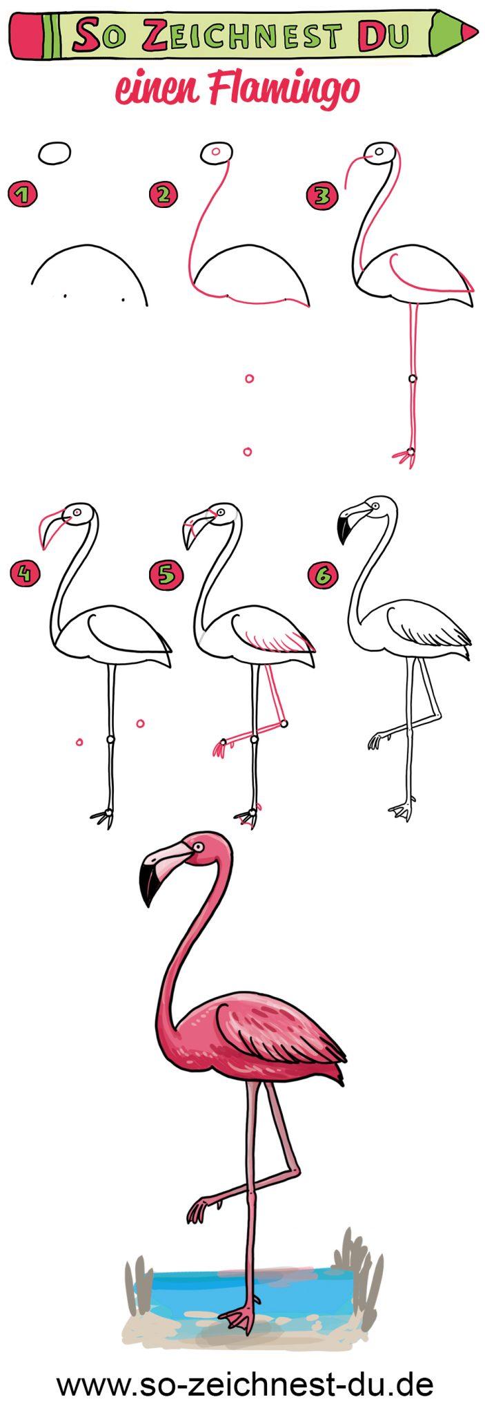 So zeichnest du einen Flamingo Zeichenschule Vogel Exotisch