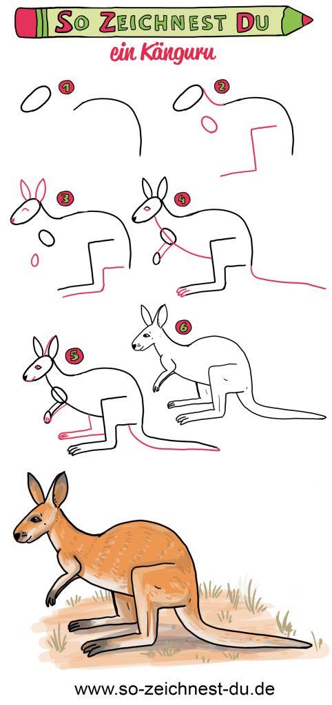 So zeichnest du ein Känguru - Schritt für Schritt zeichnen