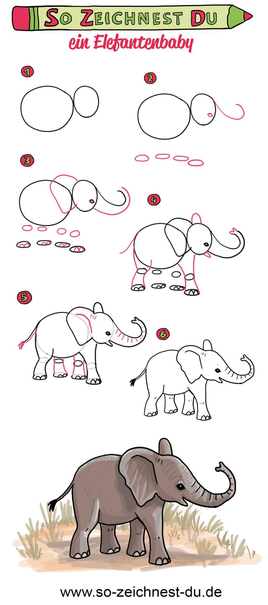 So zeichnest du ein Elefantenbaby Elefant Zeichenschule Savanne