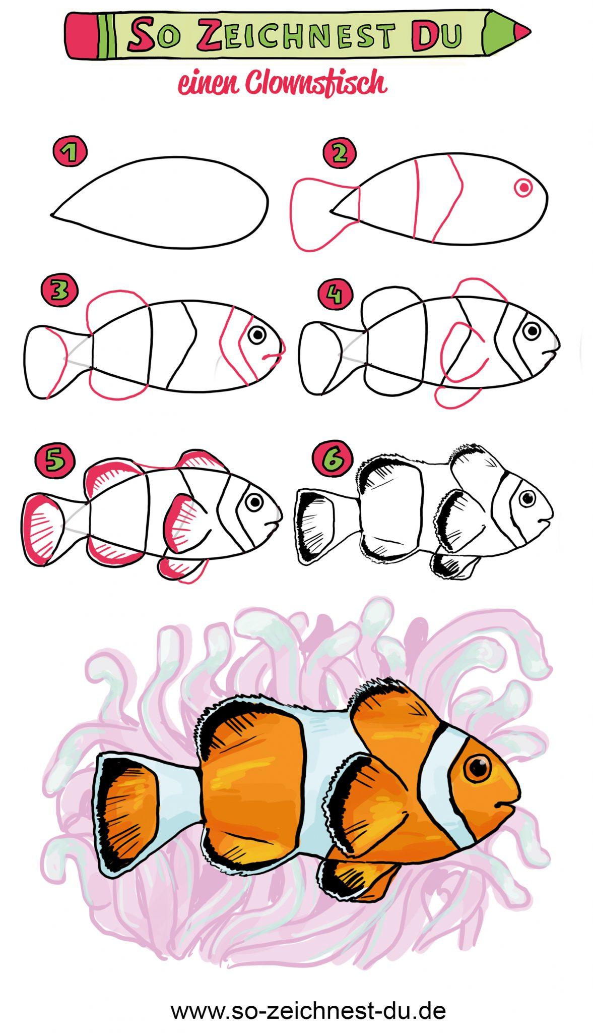 So zeichnest du einen Clownsfisch Nemo Zeichenschule Schritt fü